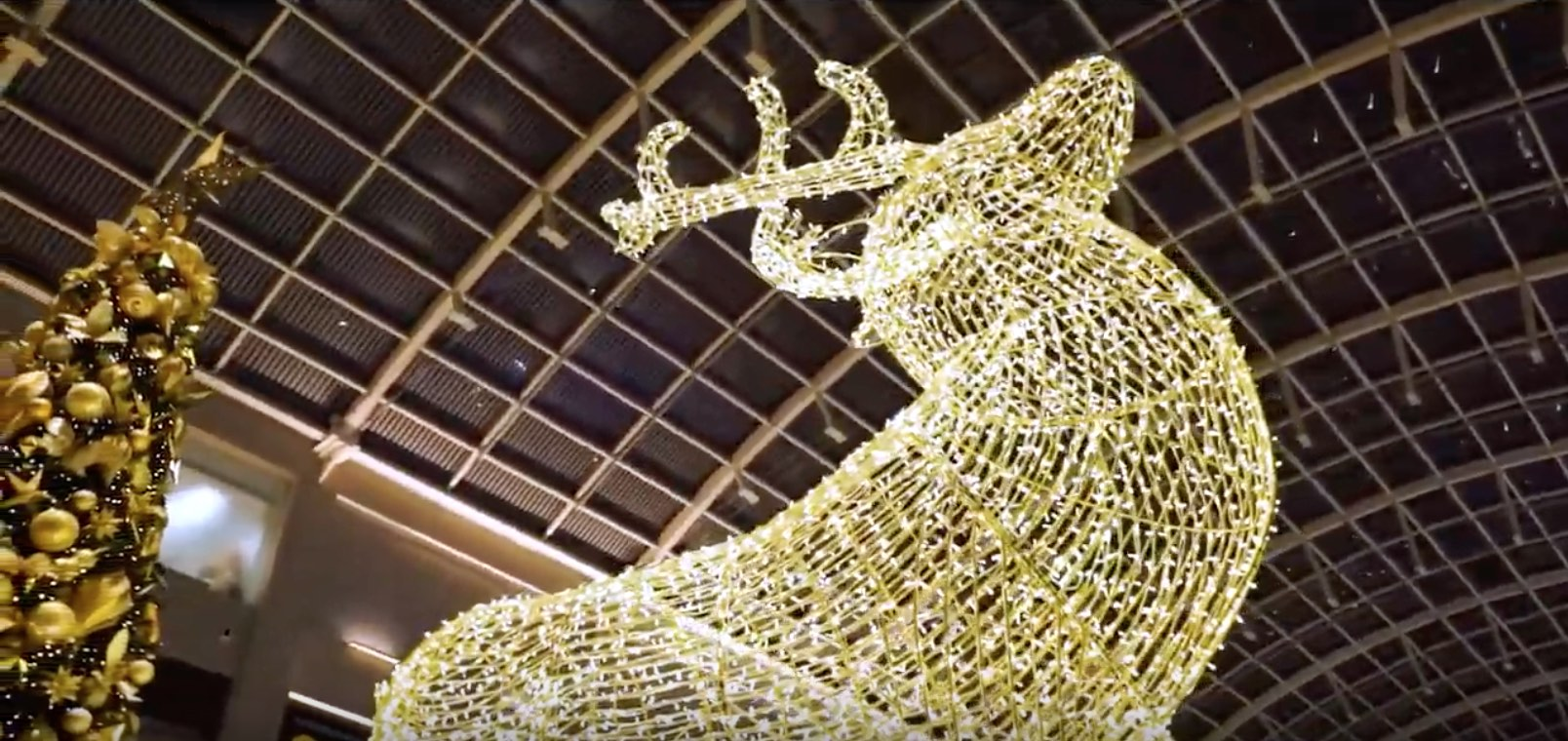 Marina Bay Sands Singapore Christmas Decoration Lighting Show (Video Production)