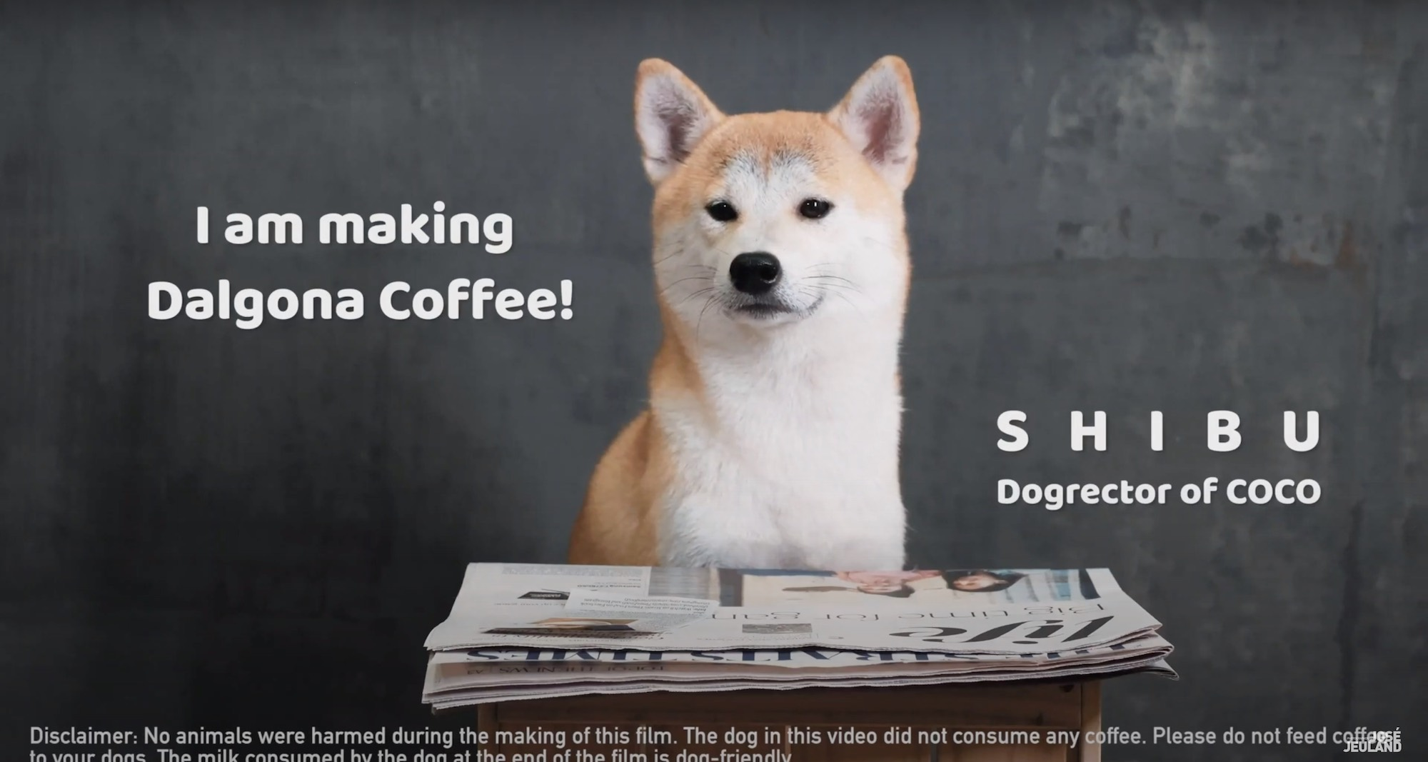Dalgona coffee drink recipe shiba inu dog singapore video production company