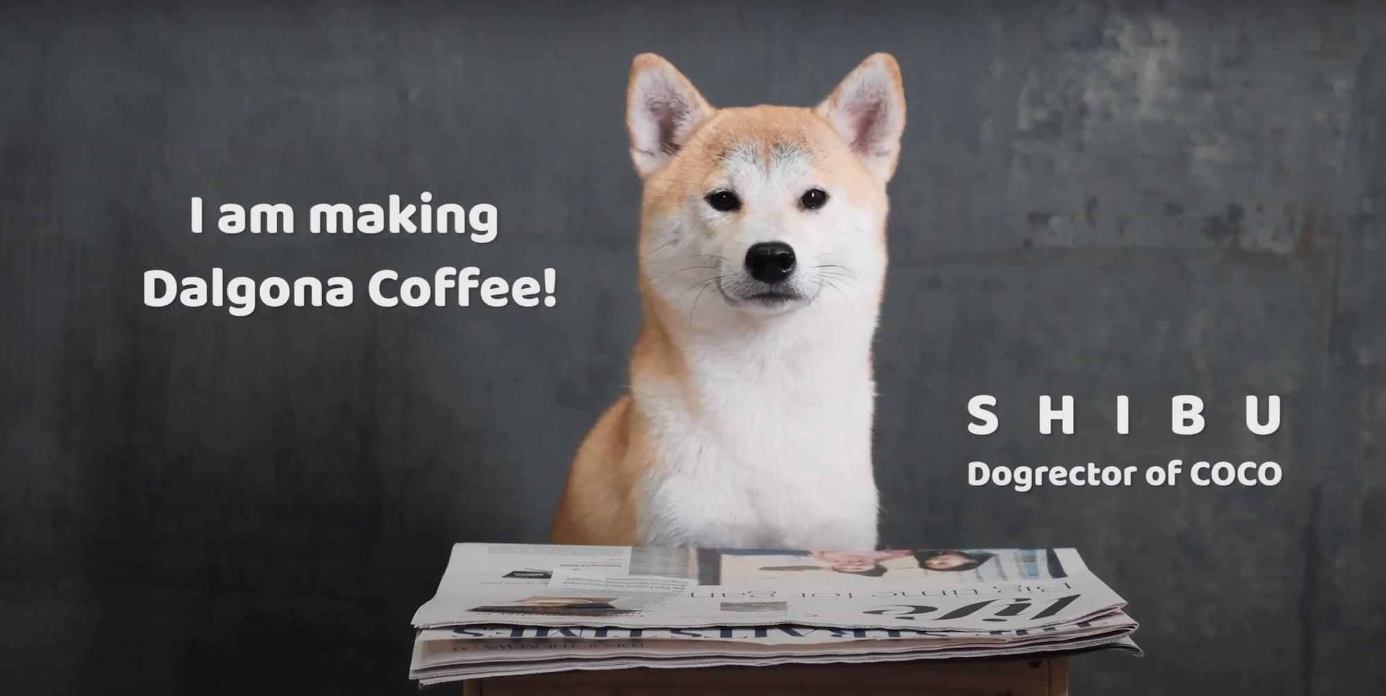 Screenshot DALGONA COFFEE DRINK DOG video production company in singapore coco creative studio