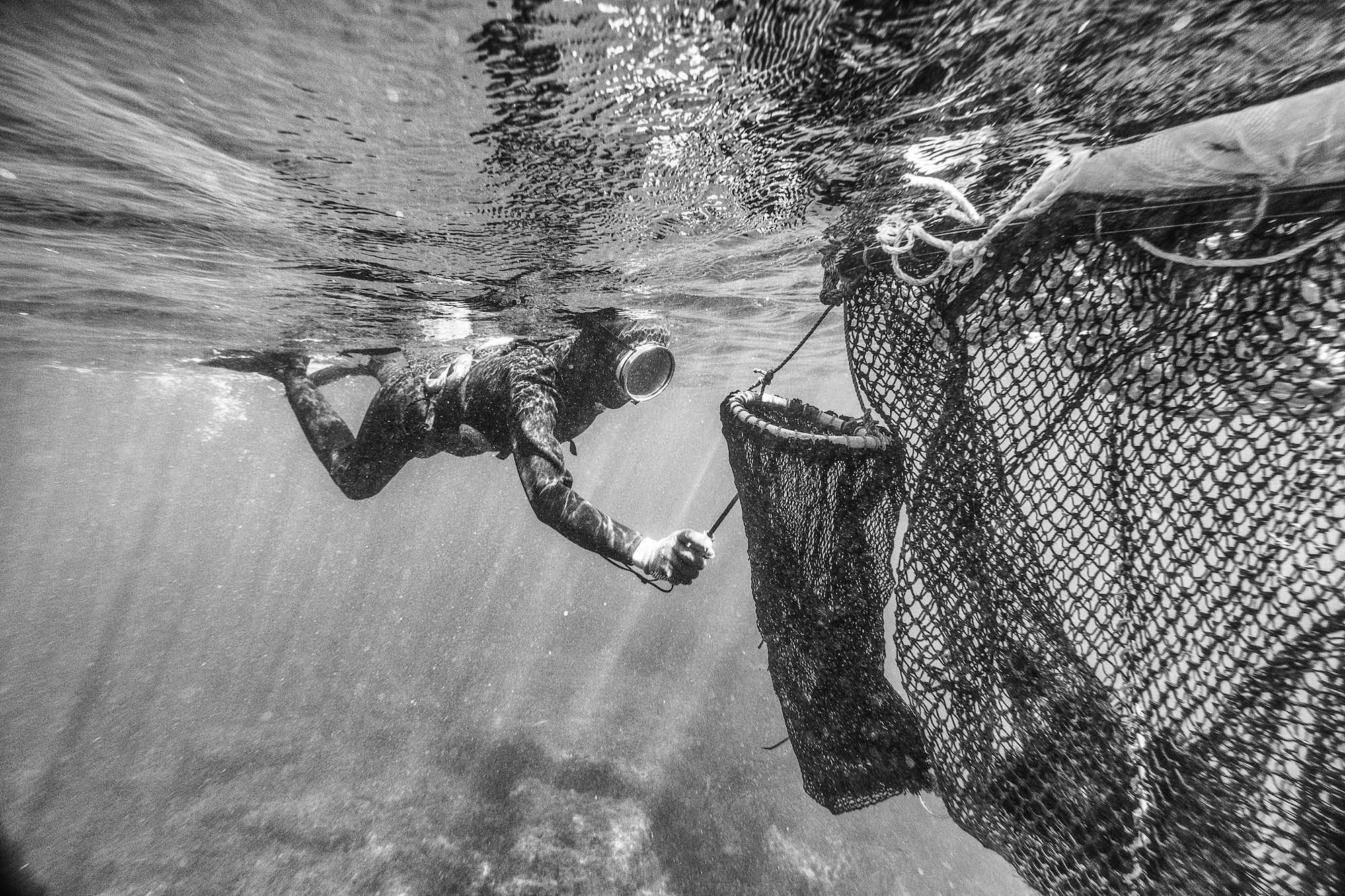 Underwater Photography Haenyeo Jeju FUJIFILM XT2 Singapore Jose Jeuland COCO Creative Studio 4